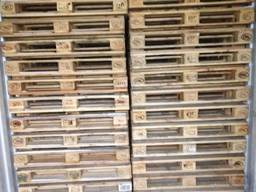 Europallets used 1st grade