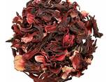 Hibiscus - photo 1